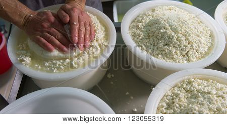 Cheesemaker boiling milk into the mixing pot for making cheese