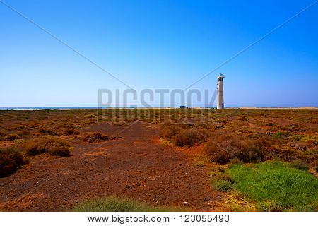 Morro Jable Matorral wetlands Jandia in Pajara of Fuerteventura at Canary Islands