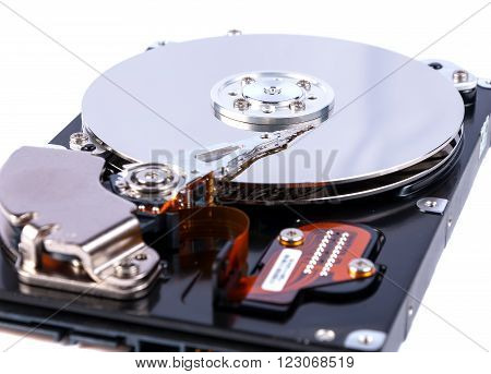 Hard disk open isolated on white background. Hard disk