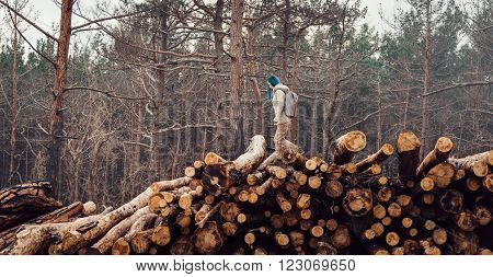 Traveler young woman with backpack walking on stack of felled tree trunk in the forest