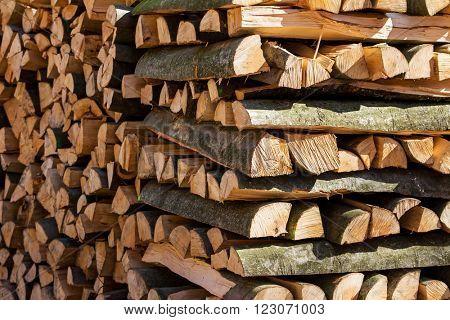 recut tree trunks