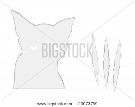 Torn paper silhouette of a cat head and a ragged scratches
