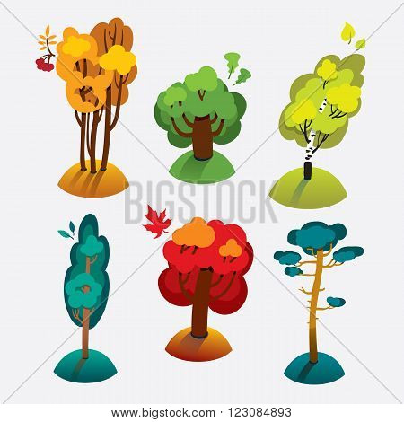 Collection of trees. Vector illustration. Maple, ash, oak, birch, poplar, pine