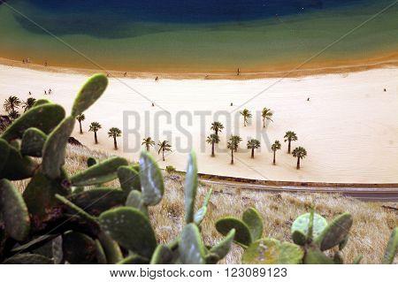 Spain Canary Islands Tenerife