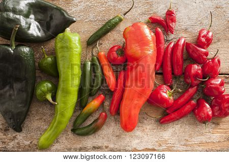 Large diverse selection of colorful poblano serrano and habanero peppers on a rustic wooden table