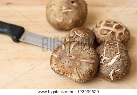 Shiitake mushroom on wooden table in kitchen