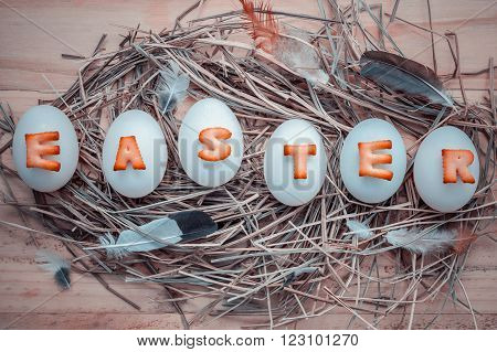Easter Eggs On The Nest. Easter Eggs For Easter Holidays Design. Easter Eggs With Abc Cookie Text.