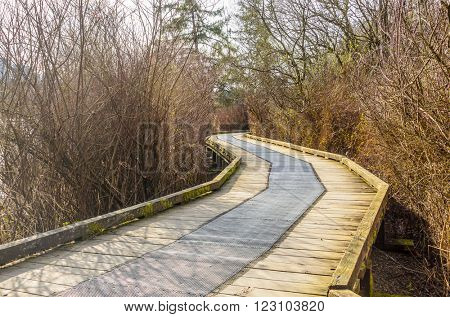 Wooden path at Deer Lake trail in Vancouver, Canada.