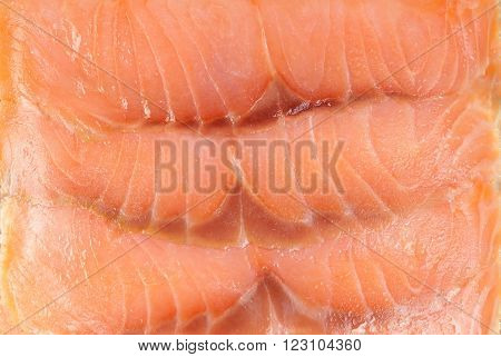 Fresh red salmon texture photographed close up