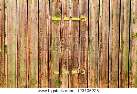 Old colored wooden boards as a background with copy space. Wooden rustic background or painted wood boards texture. Boards with metal hinges. Old peeling paint.