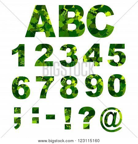 Green Leaves font - numbers  alphabet with green leaves solated on white background. Vector illustration.