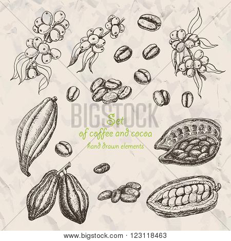 Set of coffee and cocoa in sketch style. Vector  illustration for your design