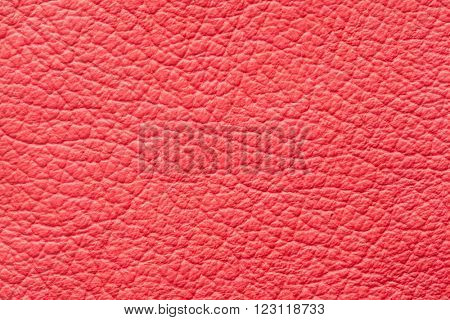High quality red genuine leather pattern sample