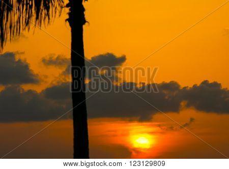 Sunset above the Key West Bight on a tangerine sky.