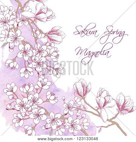 Background with sakura and magnolia. Hand drawn spring blossom trees. Vector illustration with cherry blossoms.