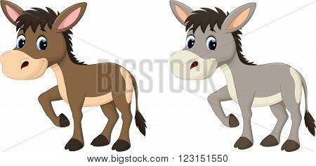 Vector illustration of Funny donkey cartoon isolated on white background