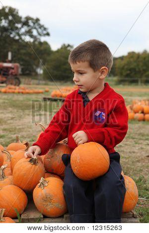 Boy and Pumpkins