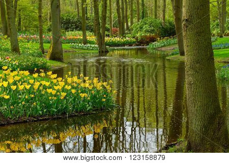 Colorful spring river landscape  in dutch garden 'Keukenhof', Netherlands