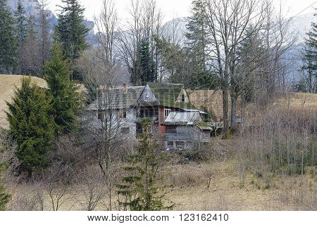 ZAKOPANE POLAND - MARCH 09 2016: Old wooden house on a hillside hidden among meadows and trees in the green part of the city. This house looks forgotten.