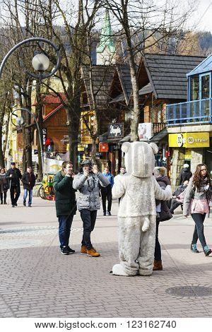 ZAKOPANE POLAND - MARCH 09 2016: Unrecognized man portrays the role of a teddy bear tourists eagerly wants to have photos with him. It is an attraction on the famous street Krupowki