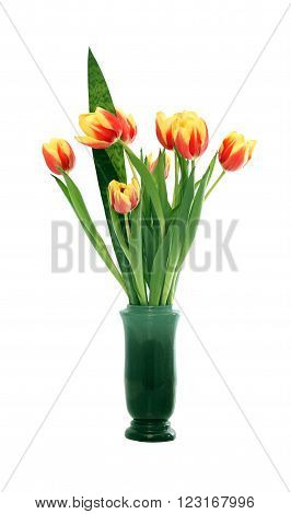 Bunch of tulips in nice ceramic vase on white background. Isolated with clipping path