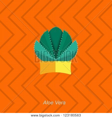 Illustration of houseplant, indoor and office plant in pot. Vector homeplant aloe vera in pot. Flat aloe vera, vector icon of aloe vera. Office plant in pot.