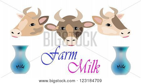 Three beautiful cows with milk jugs and text