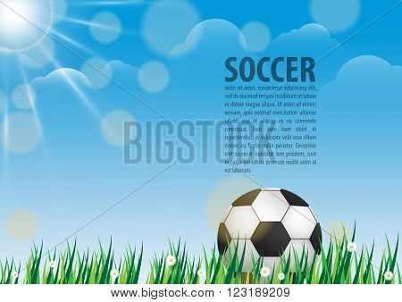 Soccer ball on grass on blue sky background
