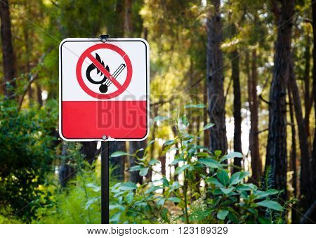 No Smoking sign in the green forest.