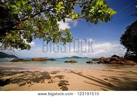 Tropical beach with tree  brances on the foreground