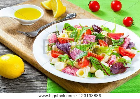 shell pasta delicious salad with mixed lettuce leaves salami on the white dish with nuts honey and sesame seeds sauce closeup