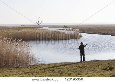 lonely fisher with fishong rod in dutch landscape with meadows and reed