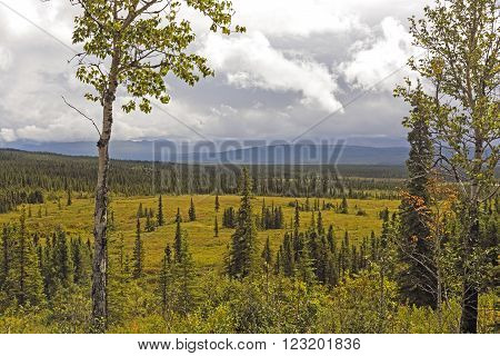 Storm Clouds over a Verdant Valley near Wonder Lake in Denali National Park in Alaska
