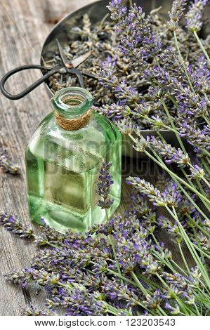 Lavender flowers bouquet with herbal oil and vintage scissors. Alternative home medicine