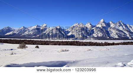 Grand Tetons Mountain Range Peaks on a gorgeous sunlit morning in Grand Teton National Park in Wyoming USA