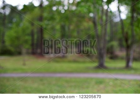 Blurred spring or autumn nature background with green field and trees on cloudy sky. nature outdoor