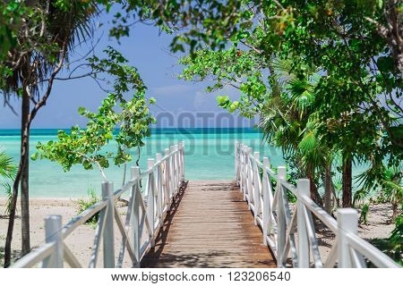Natural gorgeous amazing view of wooden bridge leading to the beach through tropical beautiful garden
