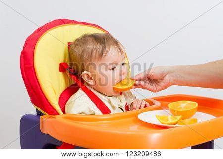 Baby sitting in highchair and eats an orange.