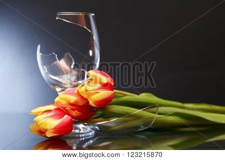 Farewell concept. One broken wineglass and tulips on nice dark background