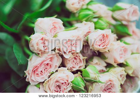 Wedding bouquet of flowers, close up floral background, mini pink roses
