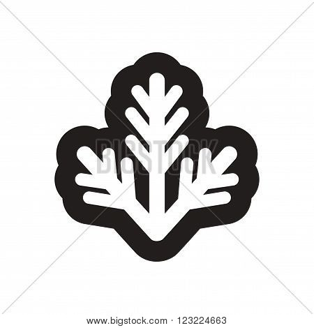 Flat icon in black and white fur-tree branch