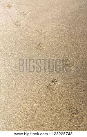 Closeup of Footmarks on the golden sandy beach