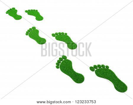 Grass Human Footprint Isolated - 3D Rendering