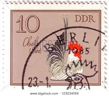 Gdr - Circa 1979: A Stamp Shows Image Of A Rooster With The Designation