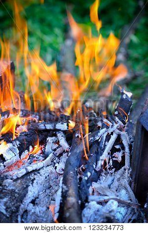 Closeup shot of camping fire. Weekend outdoors