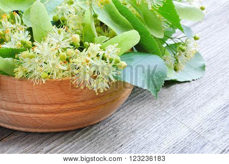 Flowers Of Linden Tree In Wooden Bowl