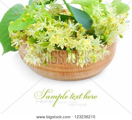 Flowers Of Linden Tree In Wooden Bowl On A White Background
