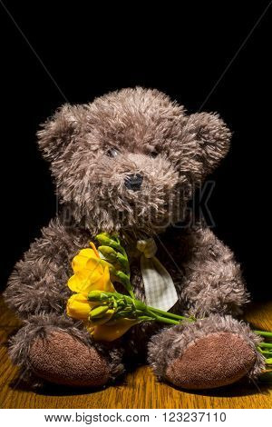 Teddy bear  and freesia isolated on black  background