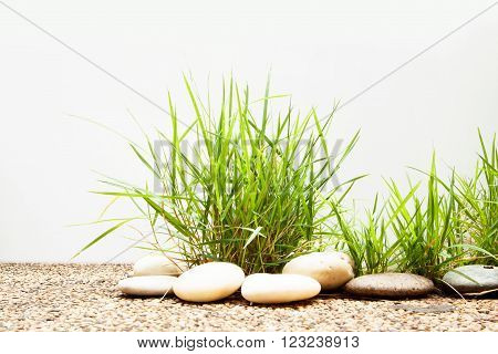 Clump of grass on floor isolated on white background.