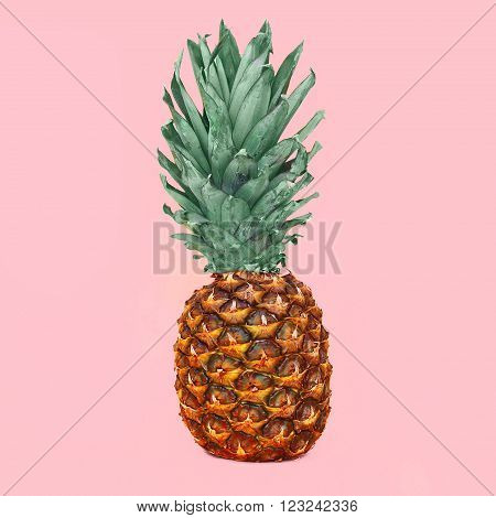 Pineapple Fruit On Colorful Pink Background, Ananas Photo